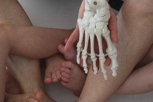 Anatomie der Kinderfüße